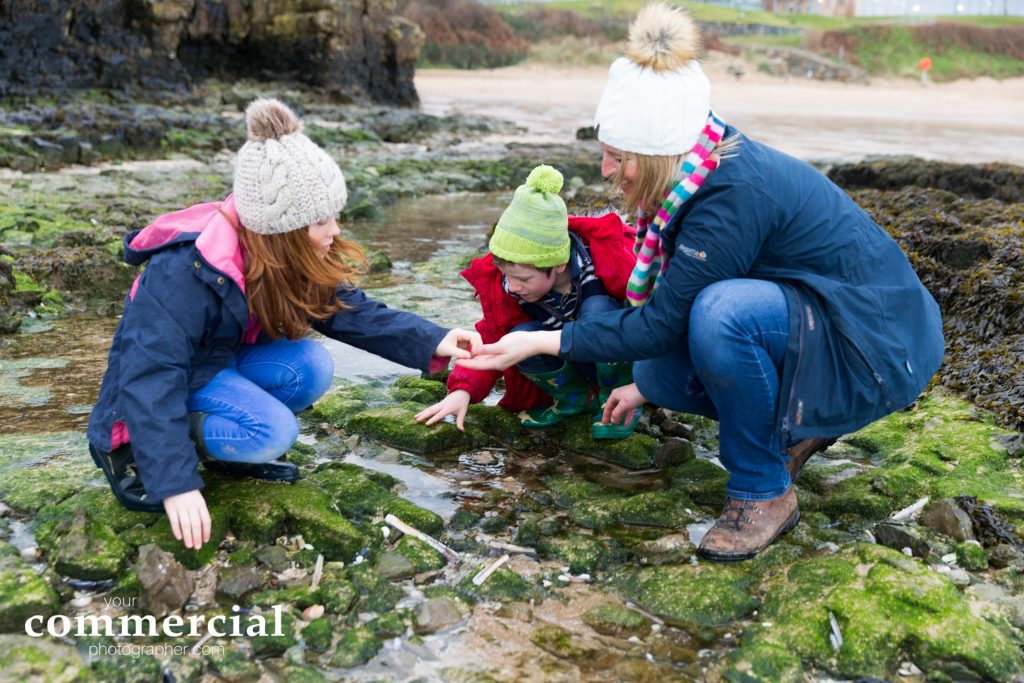 Looking for shells in rock pools