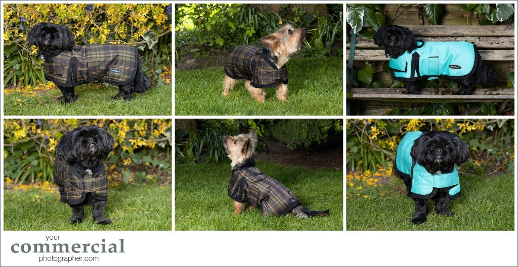 Pet product photography Merseyside
